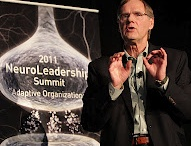 Neuroleadership insights