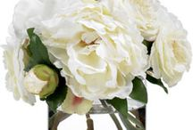 best of blooms / by best of BKLYN