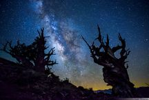 Photography - Nightshooting