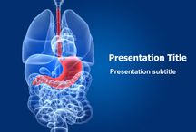 Digestive System Templates / Medical PowerPoint templates as the name itself denotes helps in providing Medical PowerPoint templates to those who belong to medical field.