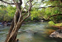 Kuruva Islands / #islands #rivercrossing #flora #fauna #elephants #naturewalks