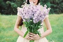 Bouquet / Wedding Flowers