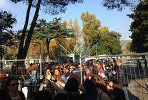 Napoli 2015 / #napolicreattiva