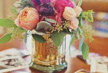 Flowers Flores Plantas / Plantas e Flores que fazem a diferença na nossa vida!