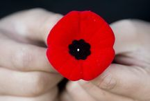 We Remember / November 11, 2014, 100 years of Remembrance