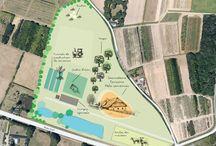 Sur les Landes... / Site de production, éco-pâturage, verger de la Ferme de Sainte Marthe