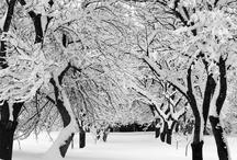 For Wintertime