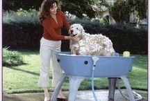 10 Best Portable Dog Bath System