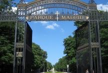 Parque del Retiro / Parque del Retiro, a big park near the citycenter of Madrid