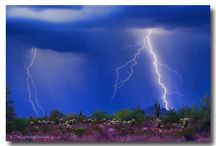 """Thunder"" Storms / by Grand Canyon University"