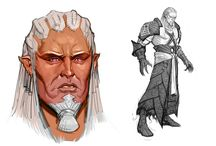 Cosplay Idea: Dragon Age: Inquisition