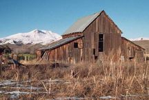 Every Child Needs an Old Barn