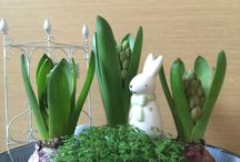 table.. mini garden