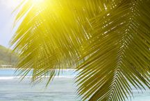Pictures of tropical island beaches / Most amazing paradise places in the world