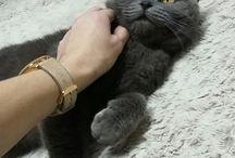 Teddy♥♥