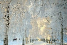 Four Seasons ☀❄☔ / Summer, Fall, Winter, Spring Pics & Quotes / by Username