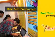 Jobs / All jobs post of yellowjobs.