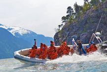 Skagway Tours / Tours and excursions in Skagway, Alaska. Dog mushing, ziplining, glacier treks, bike rides, and more!