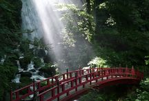 INSPIRATION Japan / Introducing the beautiful aspects of Japan  日本の美を紹介いたします。