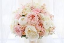 Pivoine - Fleurs de mariage