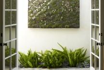 Verticals garden project