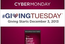 #GivingTuesday / December 3, 2013 is #GivingTuesday. What would you give to know how to end breast cancer by the end of the decade? #BCD2020 #BCSM / by Breast Cancer Deadline 2020®