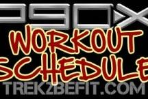 professional workout programmes