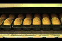 thema brood