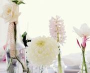 Wedding Ideas / by Kt Kollar