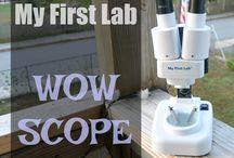 My First Lab