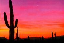 Arizona! / by Chuck Cope