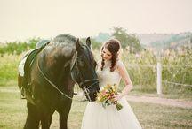 Wedding Portofolio / Wedding Photography Portofolio