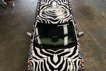 Zebra wrapping