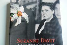 Suzzane Davit