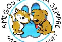 Sobre animais: cuidados e afins