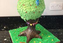 Antigravity/ Cake Frame Cakes