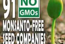 Heck No GMO! / Information on GMO and other health related info / by Whitney Knox