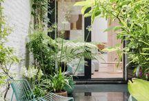 binnenplaats - patio [inspiratie]