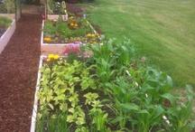 gardens e afins