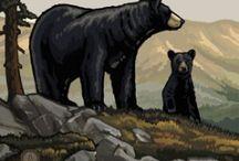 Yosemite Wildlife