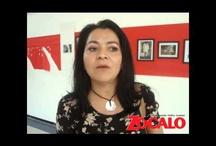 Telecomunicaciones (Videos)  / Entrevistas y comentarios
