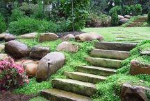 Steps: Stone