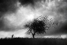 Creative inspiration | Photography
