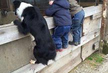 Heartwarming pictures