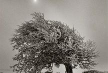 Bilder av Kirsten Klein / Naturbilder til inspirasjon