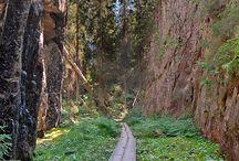 Luonto retkikohteita Suomija vähän muutakin / Etupäässä luontoretkikohteita Suomessa. Myös muuta kiinnostavaa luonnonhelmassa.