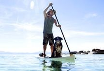 Paddle Surf Inspiration