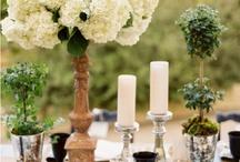 barn wedding / by Lindsey Sway