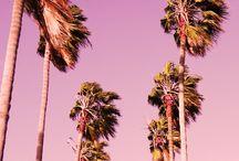 İlham Aldıklarımız - Yaz Renkleri / Bisous koleksiyonlarını oluştururken ilham aldığımız kişiler, yerler ve daha fazlası..