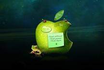 jablíčkování - iApple